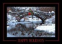 Bridge over Chilly Waters New York Holiday Cards